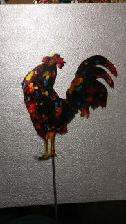 A very proud rooster.